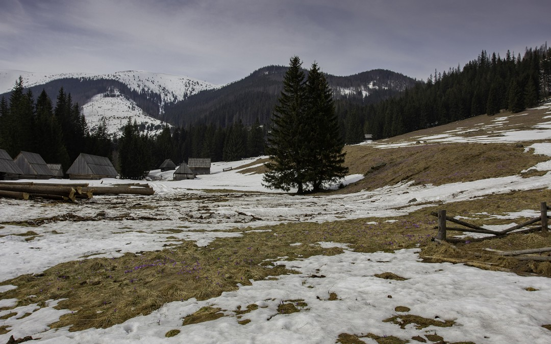 03.04.2019r. – aktualne warunki na polanie